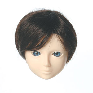 [60WG-L01-02]Wig L Short Dark Brown