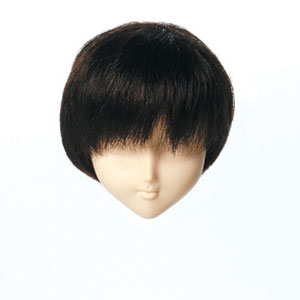 [60WG-S01-02]Wig S Short Dark Brown